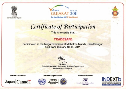 Vibrant Gujarat - Certificate of Participation (2011)